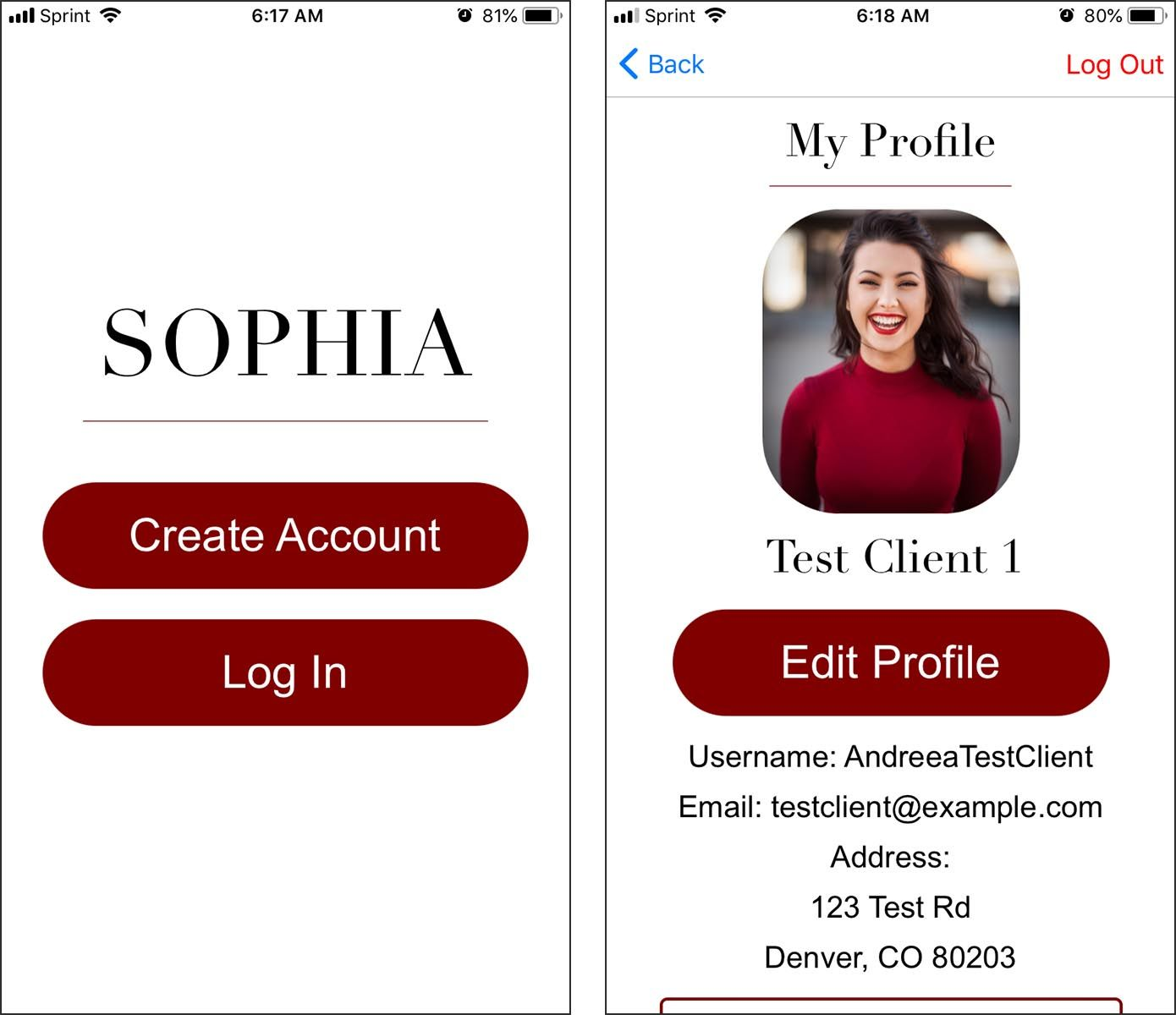 Screen view of the SOPHIA application login page.